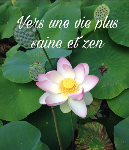 Vers une vie plus saine et zen